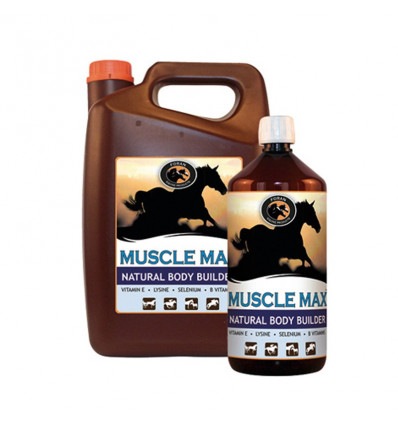 Musle Max