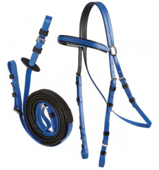 Race bridle with reins