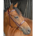 Exercise race bridle