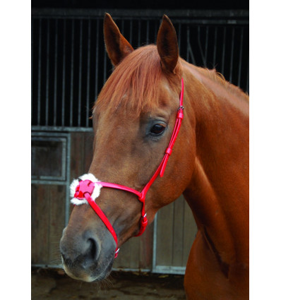 BreezeUp synthetic grackle noseband