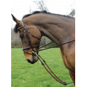 Bungee Martingale