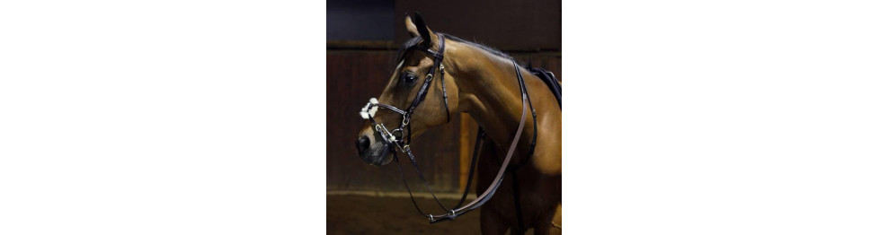 Bridles And Its Parts